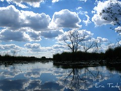 Clouded view (ET's Photo Home) Tags: trees sky lake reflection water clouds reflexions kettlemorainesouth scuppernong naturesfinest aplusphoto diamondclassphotographer colourartaward