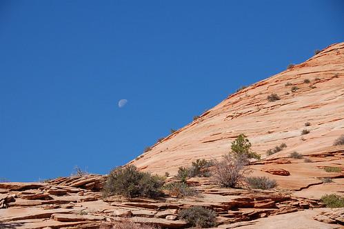 Zion con la luna