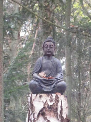 Verlichting: een herfstig boeddhabeeld