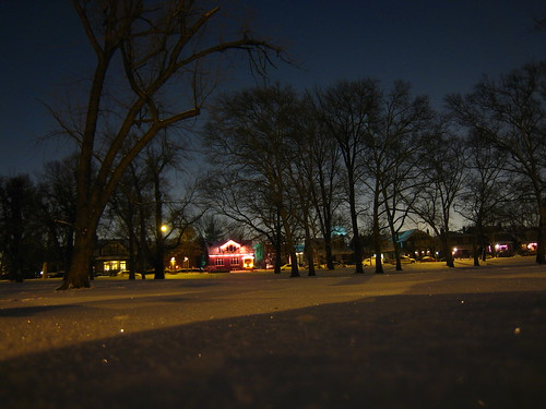 Walking through snowy Tower Grove Park in St. Louis, MO at night - Christmas Lights