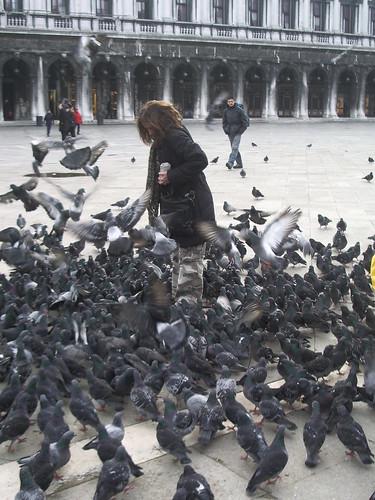 Palomas en la Plaza de San Marcos