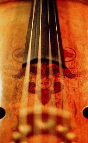Closeup of a Cello