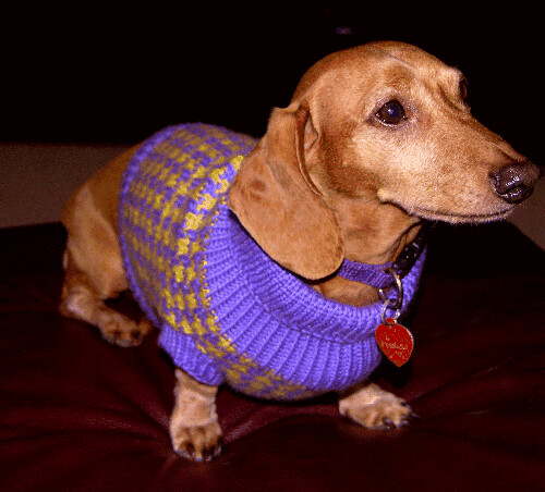 Knitting Patterns For Dachshund Dog Sweaters : Houndstooth Hundestrickjacke - Knitting to The X-Files (and Firefly, and Top ...