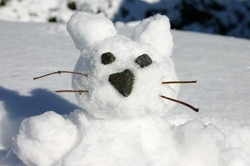 snowcat close