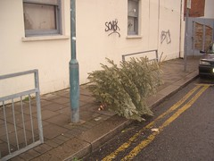 the christmas tree rubbish