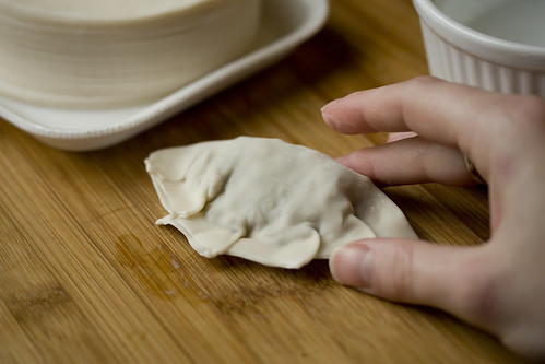 Folding Pot Stickers