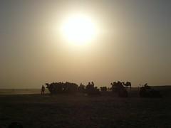 sahara desert (James_Byrne) Tags: sun tourism sahara evening sand desert tunisia heat camels