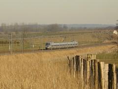 TGV R en Argonne