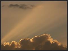 sunbeams (Zelda Wynn) Tags: sunset sky weather clouds atmosphere auckland nz rays ozone cloudscape sunbeams crepuscularrays waitakere troposphere ©zeldawynn zeldawynnphotography
