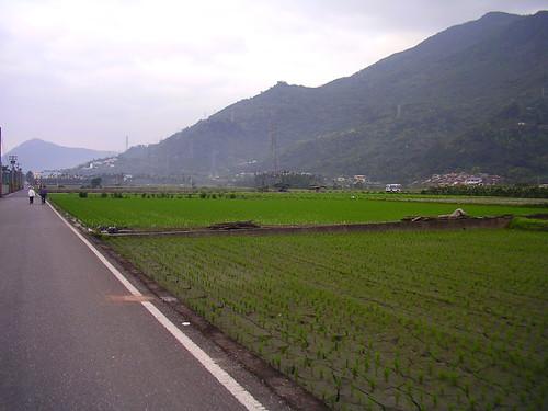 IMGP2359.JPG 單車樂活趣-吉安自行車道,鯉魚潭