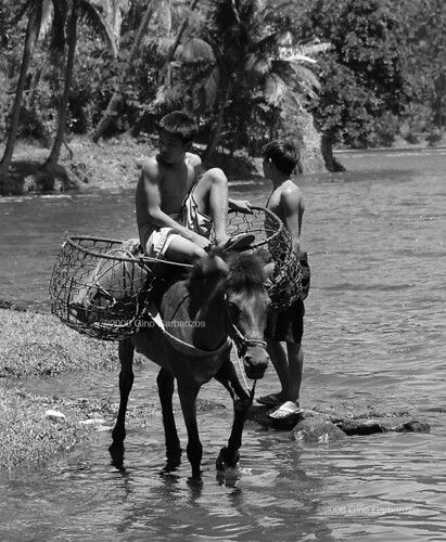 San Pablo Laguna boys horse basket Buhay Pinoy Philippines Filipino Pilipino  people pictures photos life Philippinen