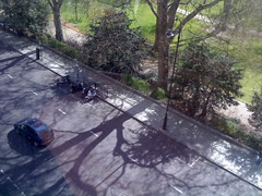 Russell Square, from the window (gt43*) Tags: city trees london work shadows russellsquare londonpark wc1b treepatterns