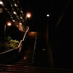 【写真】ミニデジで撮影した街中の階段