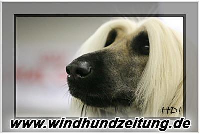 Bundessiegerzuchtschau_2006