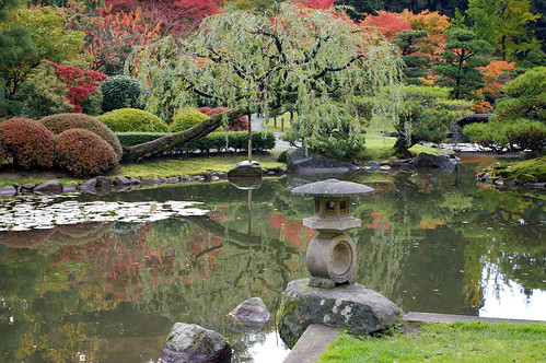 Lantern and pond