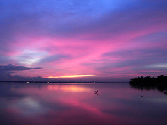 Sunset (Shinow Baby) Tags: pictures pink lake reflection nature water night landscape evening photos dusk sony kerala sonydscs40 waterscape kumarakom waterscapes sonydsc shinow