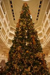 lobby Grand Floridian