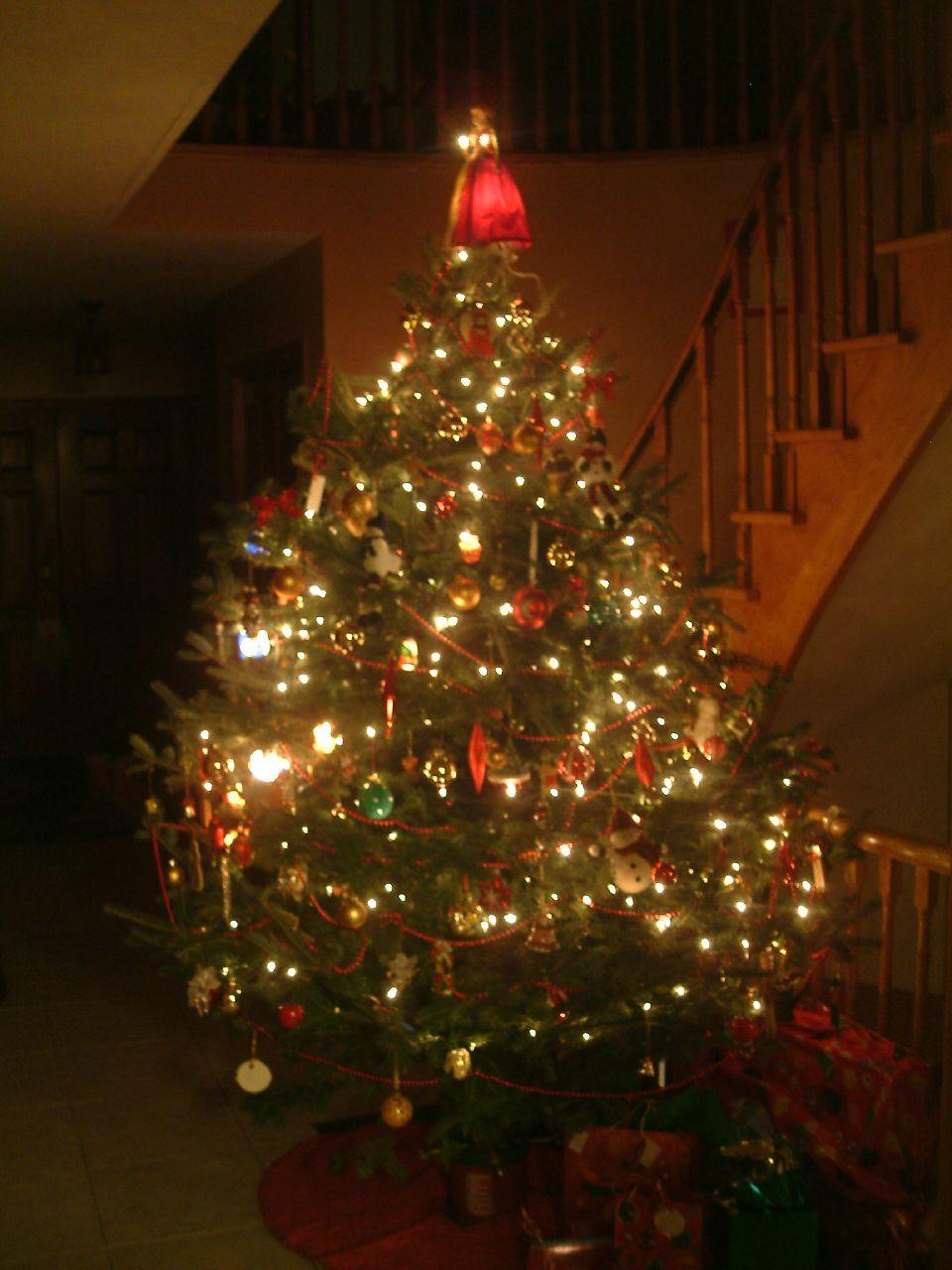 Christmas Tree '07