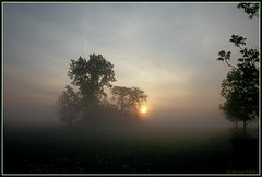The Sunup Through the Mist (Arunas S) Tags: mist tree fog sunrise foggy il naperville sunup napervilleil arunas topofthefog artofimages bestcapturesaoi
