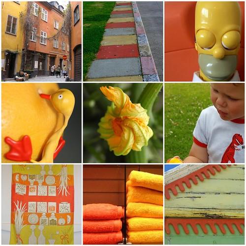 Favorites from orange+yellow week