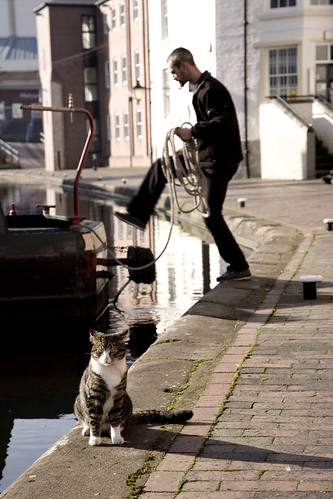 Canal Cat 2