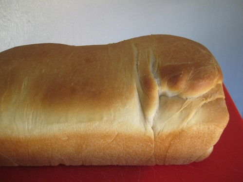 baking bread: finished loaf