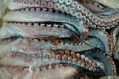 Frozen tentacles (JonathanPuntervold) Tags: fish cold ice japan tokyo market tsukiji octopus tentacle
