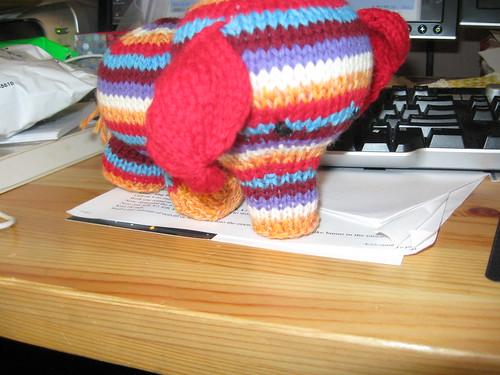 baby elephant eye