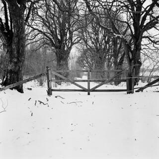Gate's closed