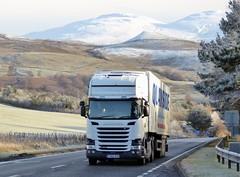 Photo of FX65 KUS - Scania R450 - Quayside Distribution (DFDS Logisticics Services Ltd.), Belshill, Glasgow, Scotland ???