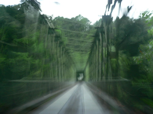 En allant vers Grand Rivière - la passerelle
