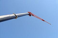 A Crane in the Sky
