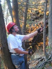 2011 05 25 climbing at Pinnacle Rock, Plainville CT 010