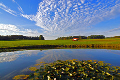countryside (chris frick) Tags: blue light red sky sun lake tractor reflection green nature water grass clouds germany bavaria see scenery view country bluesky fields agriculture soe countyside ambiance tractorpulling seerosen wonderworld fineartphotos sonyalpha100 brillianteyejewel excapture chrisfrick