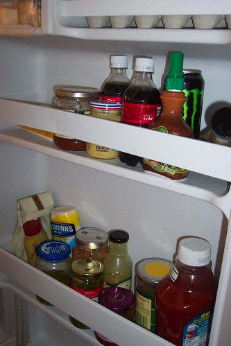 fridge_door