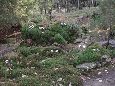 6_trollskogen