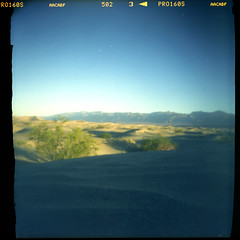 (magnifik 2.0) Tags: california 120 scanned deathvalley pinholephotography expiredfilm mesquitesanddunes homemadecamera fujipro160s magnifik 5secondsexposure royaljamaica pinholediameter015mm nopsdpostprocessing cigarboxpinholecamera focallength55mm expiredon112006 daytimeearlymorningsunlight magnifikstudio magnifikstudiocom