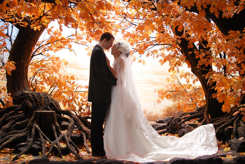 Fall wedding tips and advice having a wedding in the fall season can allow for the perfect backdrop of falling autumn leaves this will allow for an ideal atmosphere when it comes to junglespirit Gallery