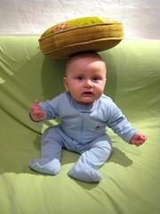 Milo with Hat - 2