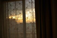 冬の西陽はなんだかうれしい / sunset over the race