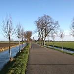 Beemster: Hobrederweg landscape in autum