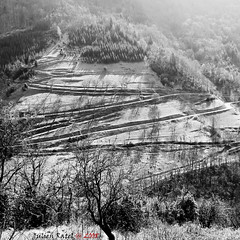 ~~ Lines and shadows ~~ (Julien Ratel ( Jll Jnsson )) Tags: bw mountain lines montagne grenoble canon landscape holidays shadows view nb massive apex harmony vercors eos350d lignes ombres massif fpc 35faves 25faves avision totalawesomeness diamondheart platinumphoto aplusphoto favemegroup4 diamondclassphotographer flickrdiamond theperfectphotographer bwartaward artofthelight blueju38 julienratel thegreatshooter