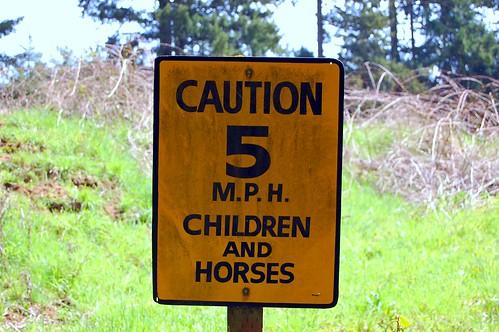 caution 5 mph