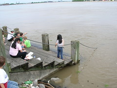 Mississippi near flood stage