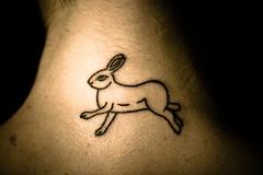Bunny Tattoo (Rolf F.) Tags: rabbit bunny animal tattoo canon neck eos rebel interestingness interesting explore 1750 28 tamron f28 bun kaninchen tätowierung nacken xti tamron1750 1750mm tamron1750mm 400d