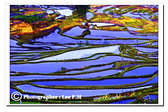 DSC_7621Yuanyang Terraced fields () (fmleesin) Tags: fields yuanyang terraced