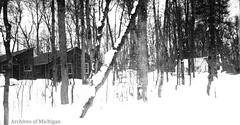Au Train Camps  Au Train Township (Central Upper Peninsula and NMU Archives) Tags: logging blackandwhitephotograph autraintownship clevelandcliffsironcompany
