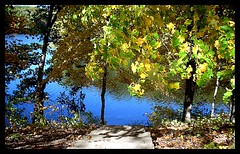 my favorite place (indielove) Tags: trees lake fall water leaves steps bluewater indiana shakamakstatepark