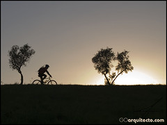 Ciclista (Guille__) Tags: light sunset sun tree sol bike contraluz arbol atardecer bicicleta bici mountanbike