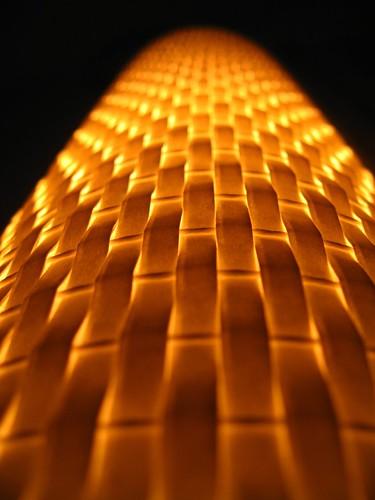 macro lamp